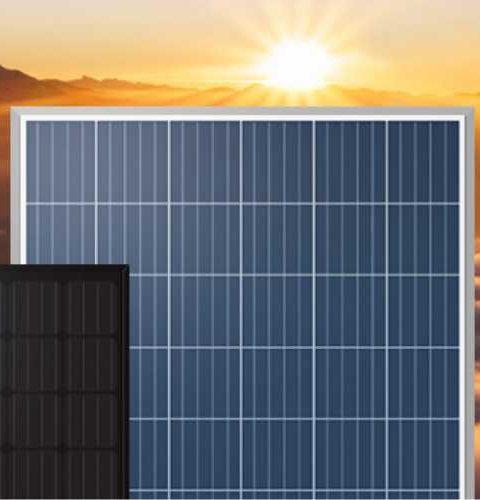 tấm pin năng lượng mặt trời 330w poly